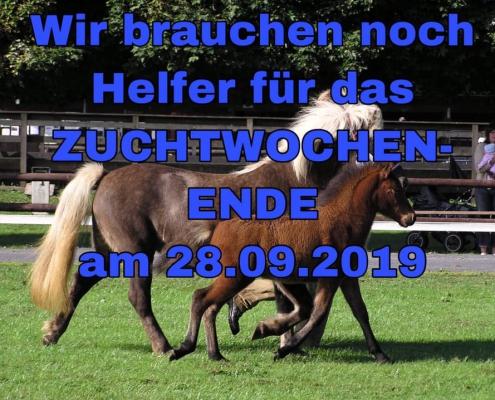 Zuchtwochenende 28.09.2019 in Roderath